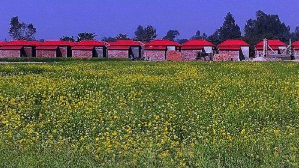 লাল টিনের ছাউনিতে ১৪৫ পরিবারের স্বপ্ন