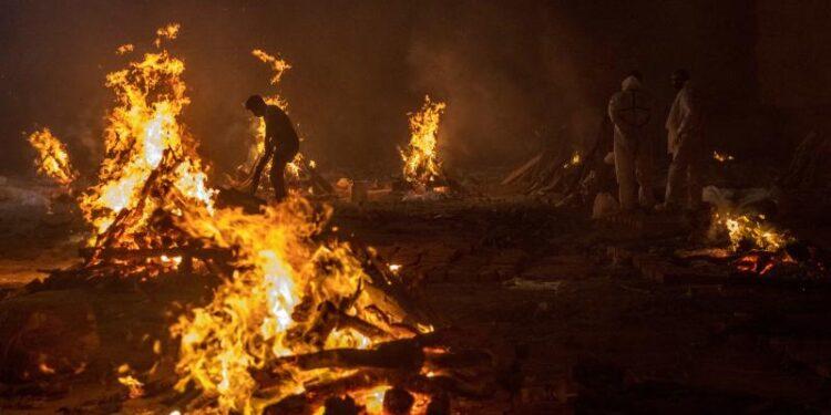 মৃত্যুপুরী ভারত, দিল্লির শ্মশানে লাশ ছিঁড়ছে কুকুর